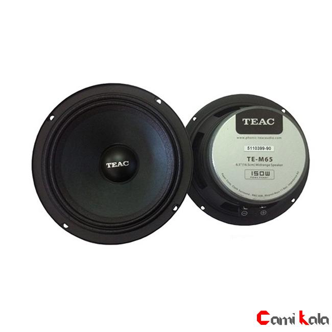 میدرنج تیاک 6.5 اینچی TEAC TE-M65